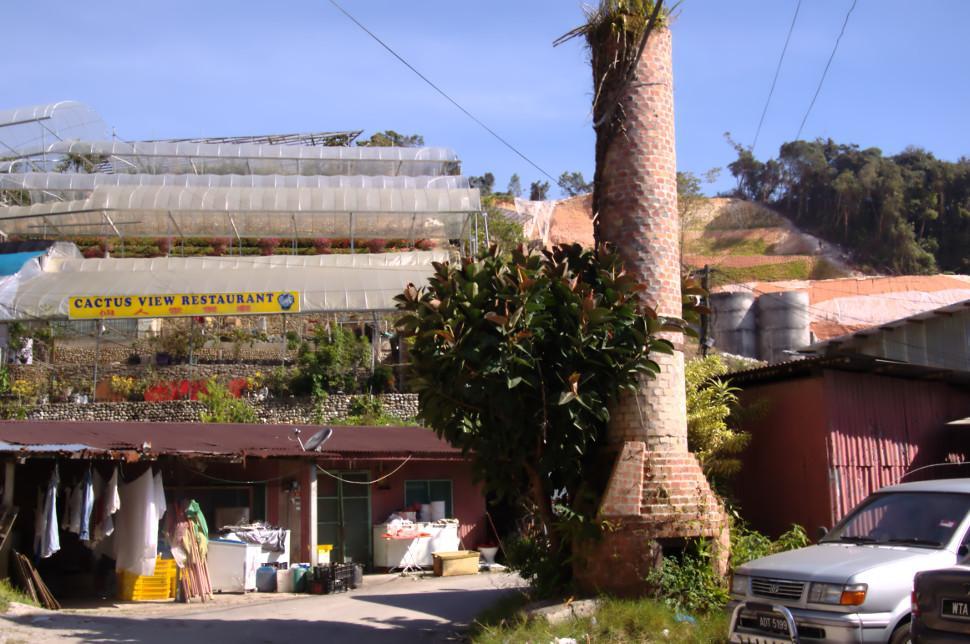 cactus_view_restaurant.jpg