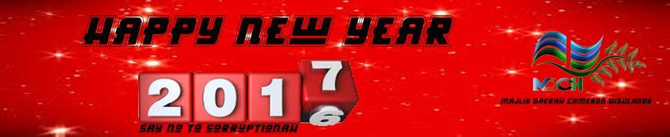 new year bi